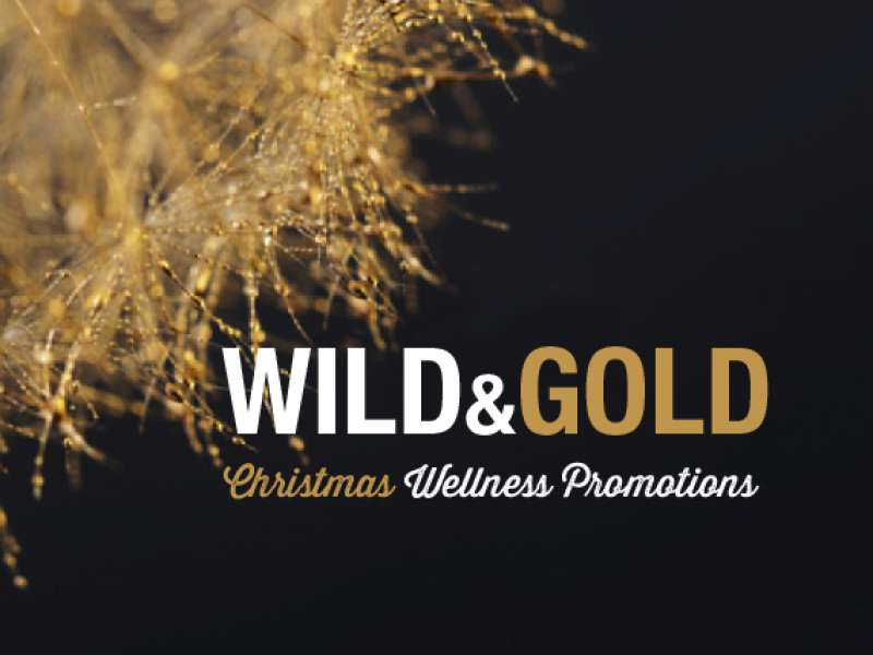 Christmas wellness promotions